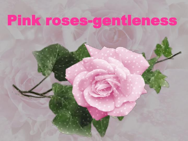 Pink roses-g