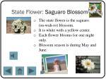 state flower saguaro blossom