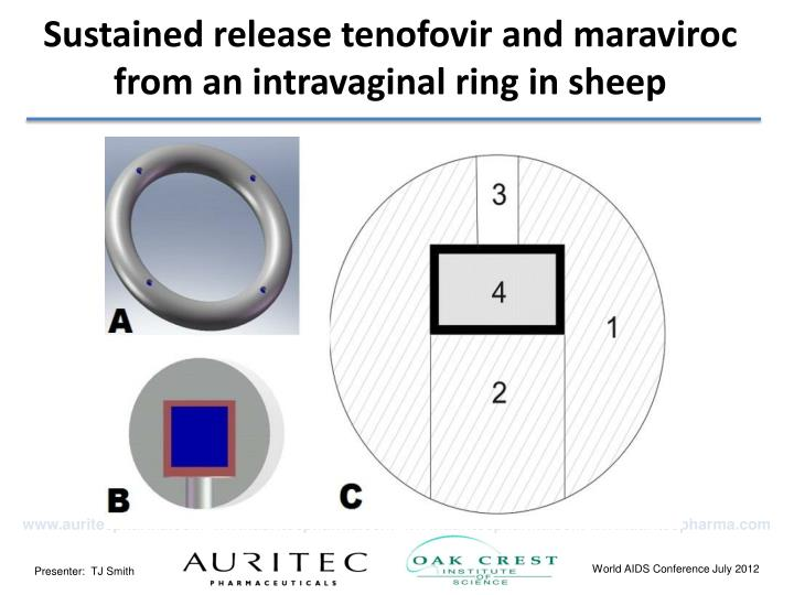Sustained release tenofovir and maraviroc from an intravaginal ring in sheep
