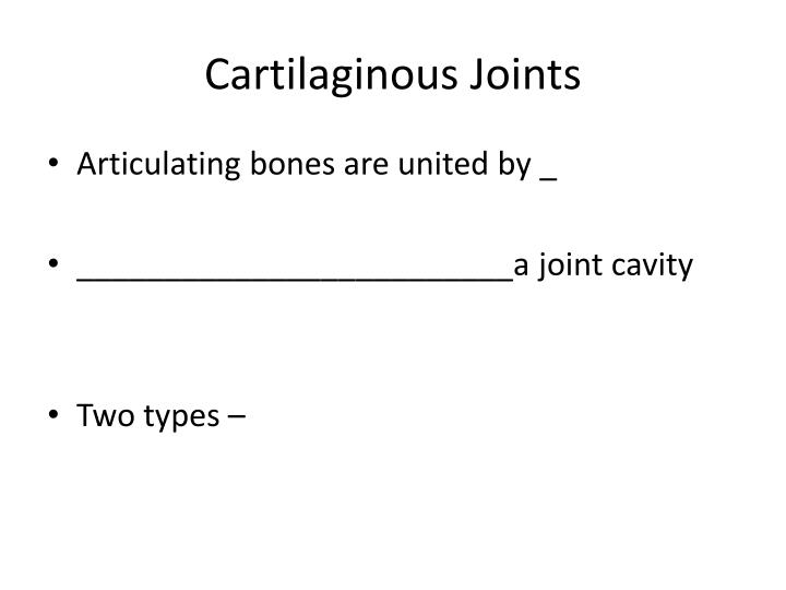 Cartilaginous Joints