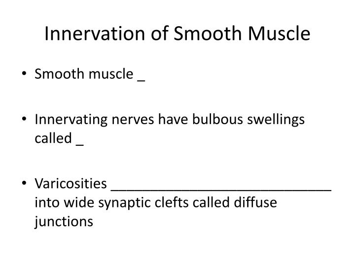Innervation of Smooth Muscle