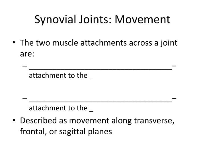 Synovial Joints: Movement