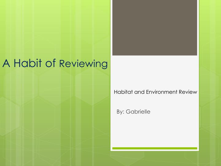 a habit of reviewing n.