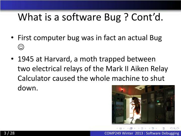 What is a software bug cont d