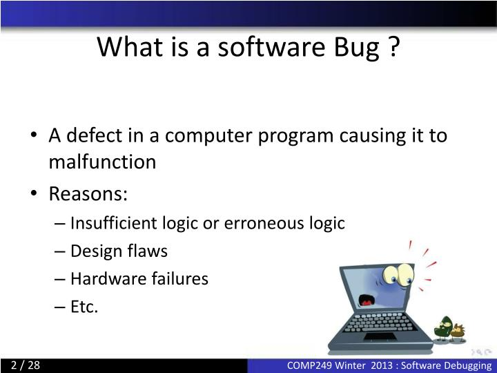 What is a software bug