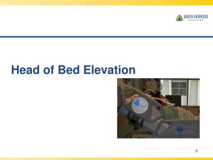 Head of Bed Elevation