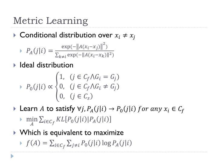 Metric Learning