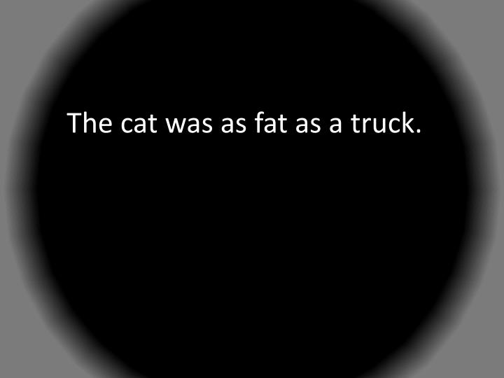 The cat was as fat as a truck.