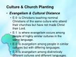 culture church planting5