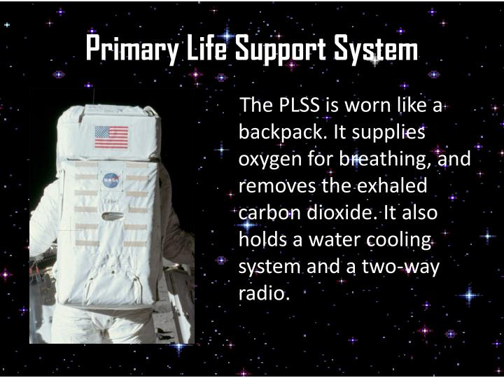 Primary life support system