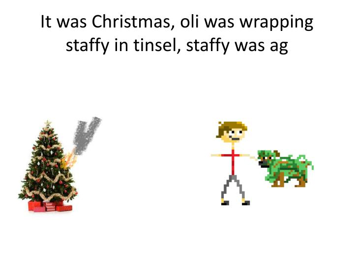 It was christmas oli was wrapping staffy in tinsel staffy was ag
