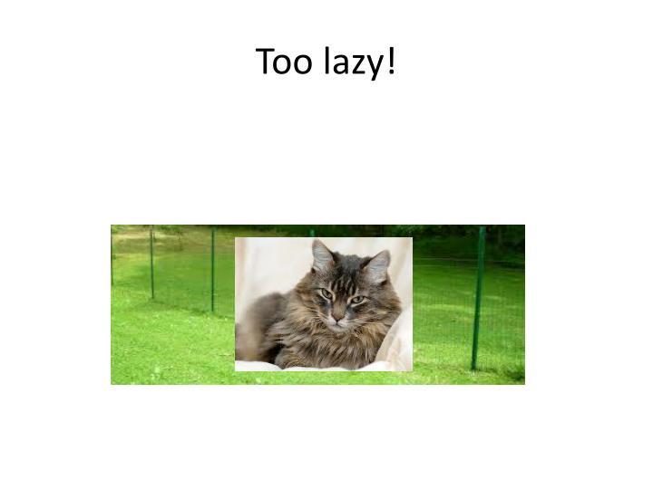 Too lazy!