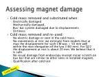 assessing magnet damage