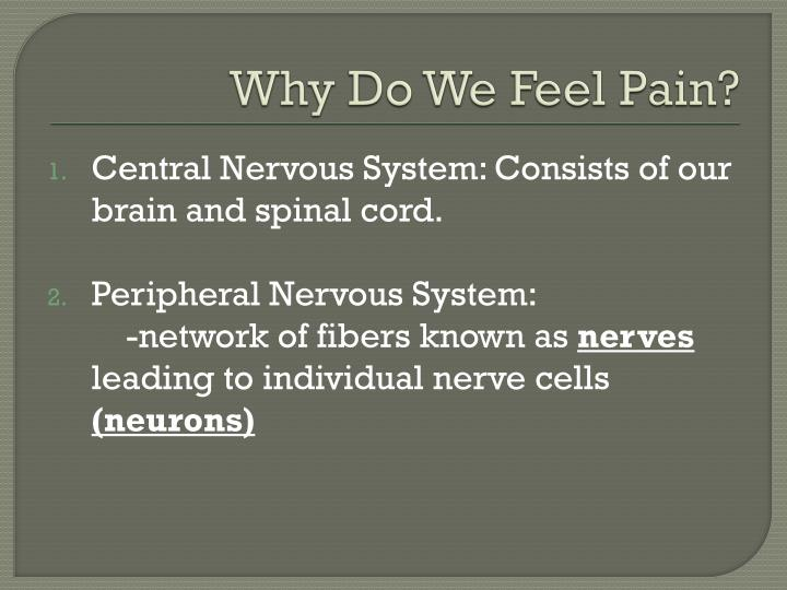 Why Do We Feel Pain?