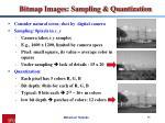 bitmap images sampling quantization