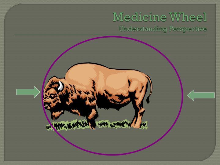 Medicine wheel understanding perspective