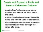 create and expand a table and insert a calculated column4