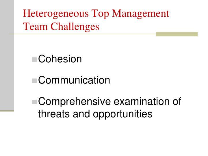 Heterogeneous Top Management Team Challenges