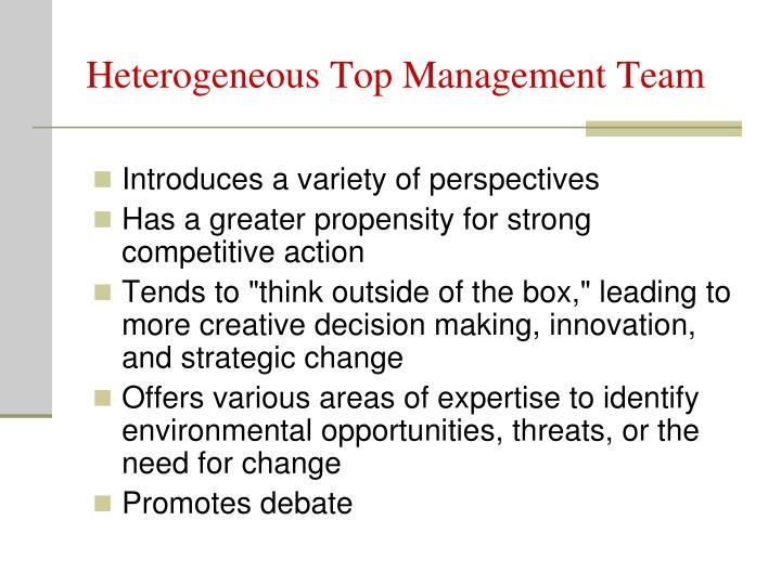 Heterogeneous Top Management Team