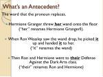 what s an antecedent
