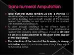 trans humeral amputation