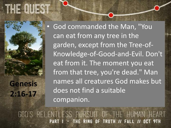 "God commanded the Man, ""You can eat from any tree in the garden, except from the Tree-of-Knowledge-of-Good-and-Evil. Don't eat from it. The moment you eat from that tree, you're dead."" Man names all creatures God makes but does not find a suitable companion."