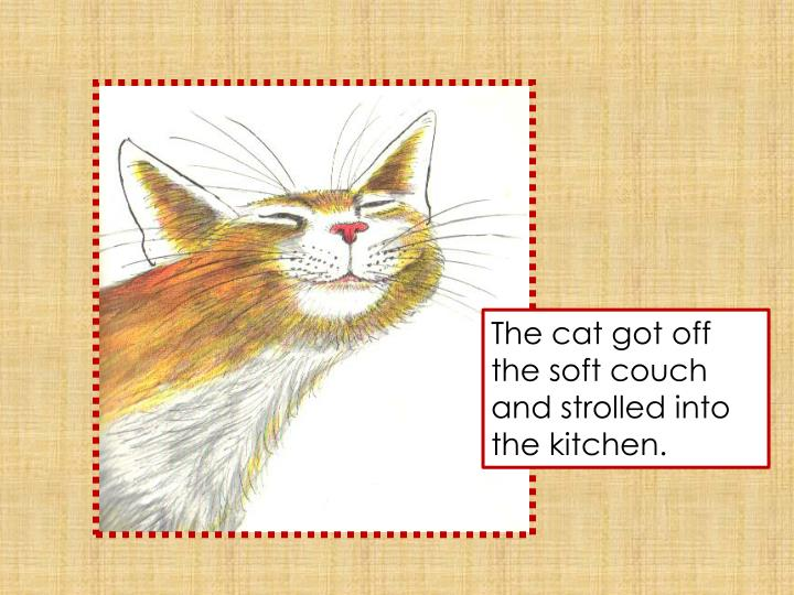 The cat got off the soft couch and strolled into the kitchen.