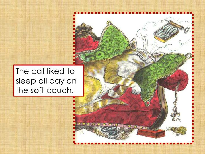 The cat liked to sleep all day on the soft couch.