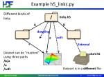 example h5 links py