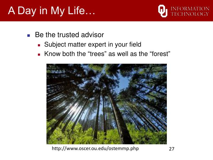 Be the trusted advisor
