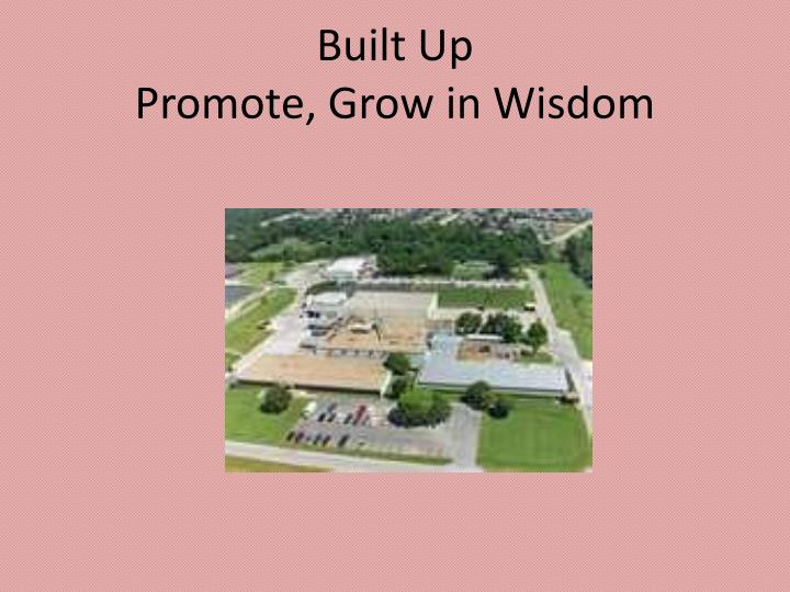 Built up promote grow in wisdom