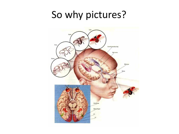 So why pictures?