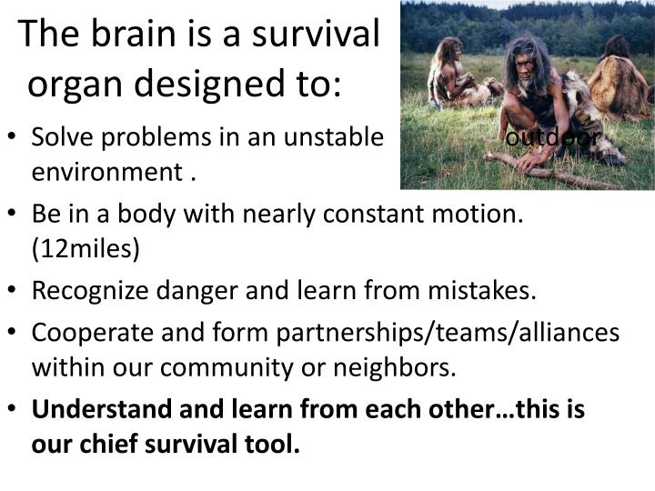 The brain is a survival