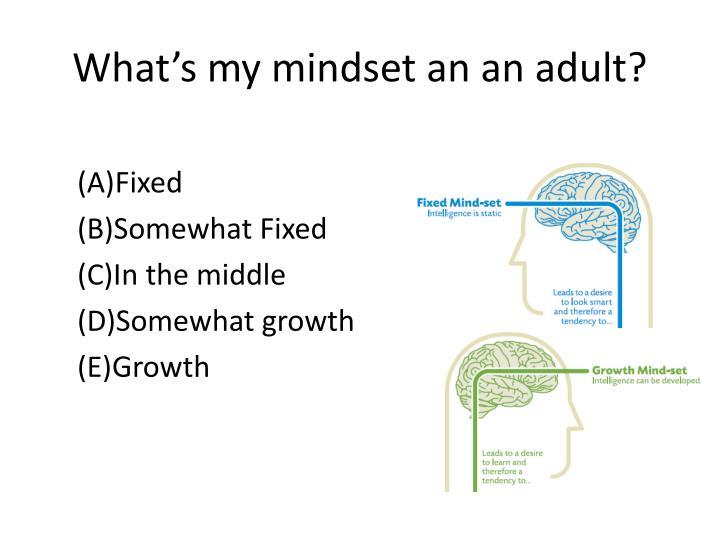 What's my mindset an an adult?
