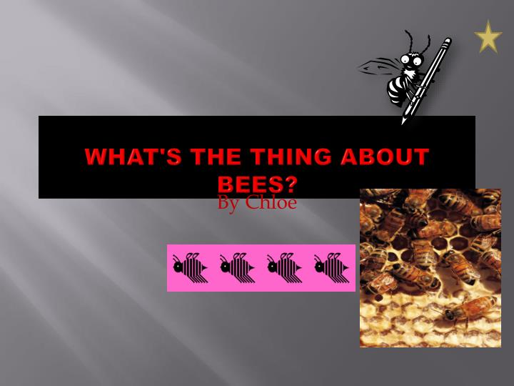 What s the thing about bees