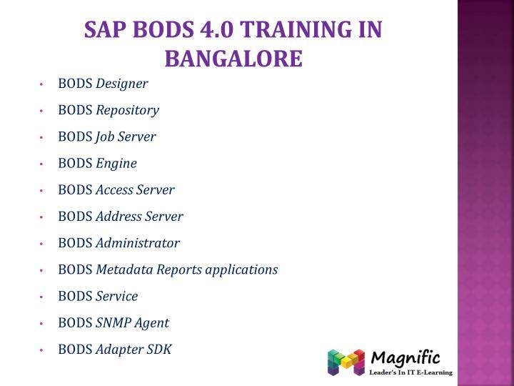 Sap bods 4.0 training in Bangalore