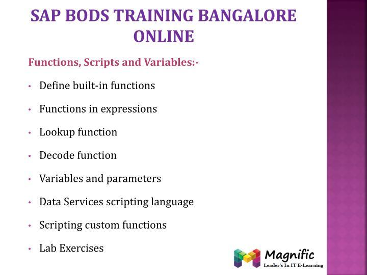 Sap bods training Bangalore online