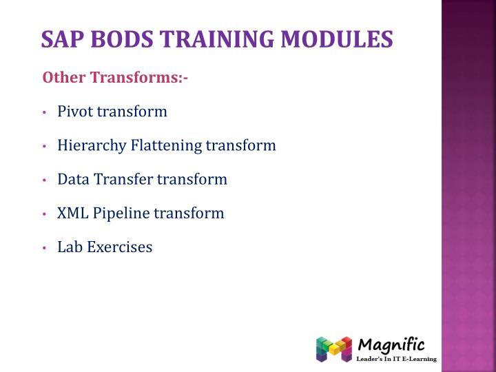 Sap bods training modules