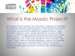 what is the mosaic project
