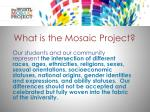 what is the mosaic project2