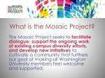 what is the mosaic project3