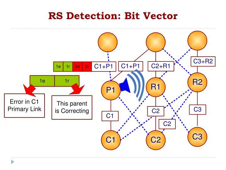 RS Detection: Bit Vector