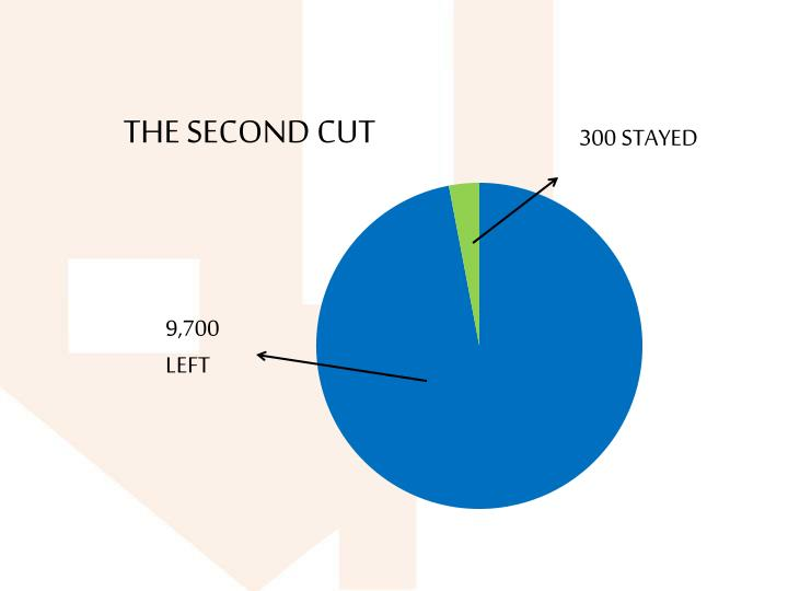 THE SECOND CUT