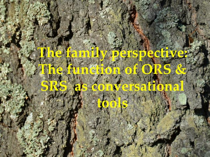The family perspective:
