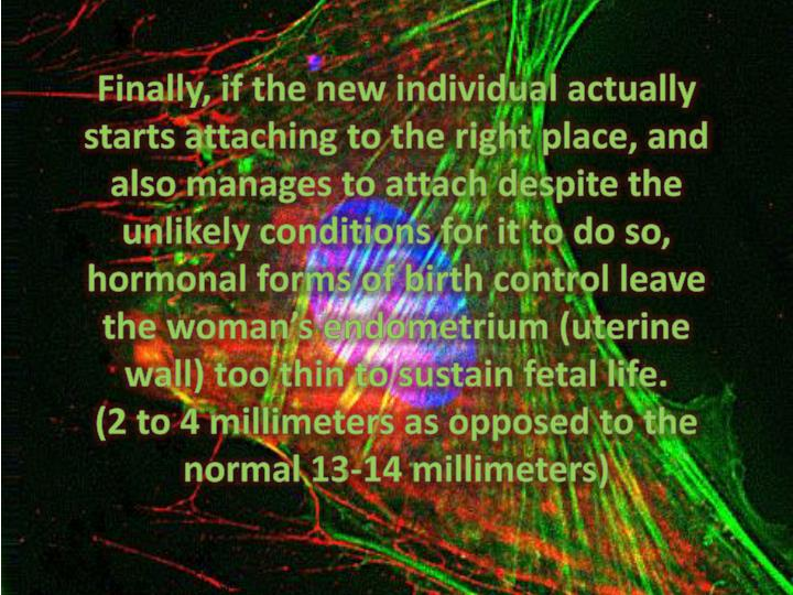 Finally, if the new individual actually starts attaching to the right place, and also manages to attach despite the unlikely conditions for it to do so, hormonal forms of birth control leave the woman's endometrium (uterine wall) too thin to sustain fetal life.