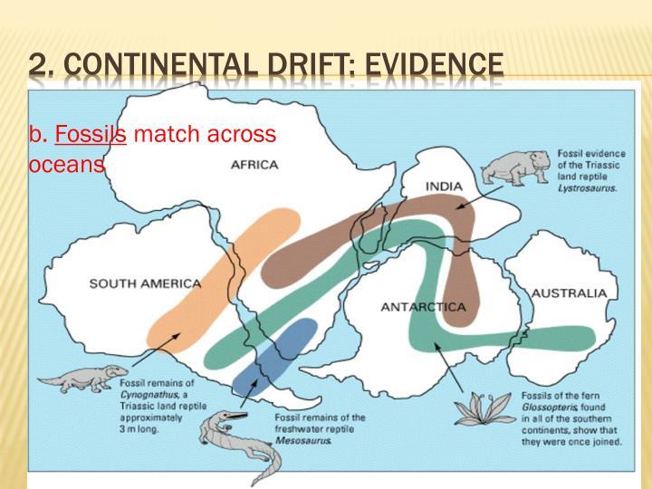 2. Continental Drift: Evidence