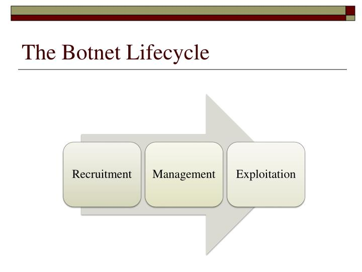 The Botnet Lifecycle