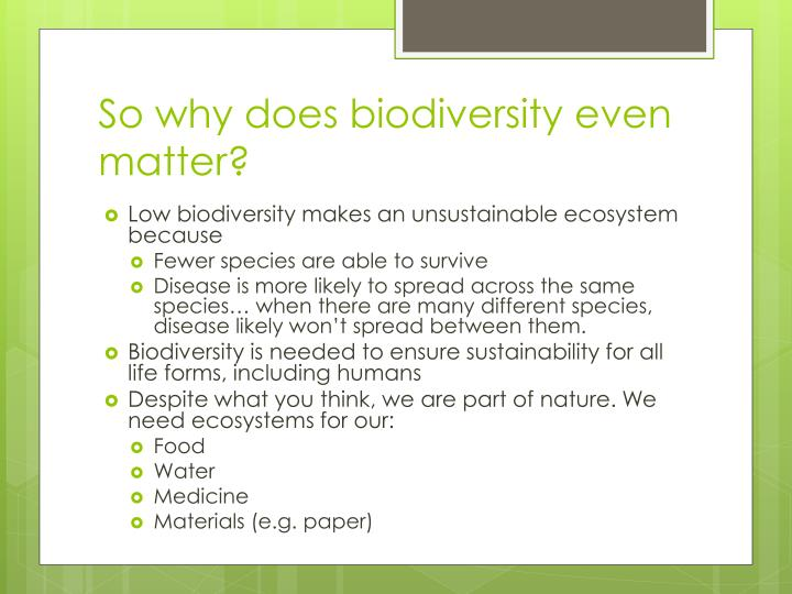 So why does biodiversity even matter?