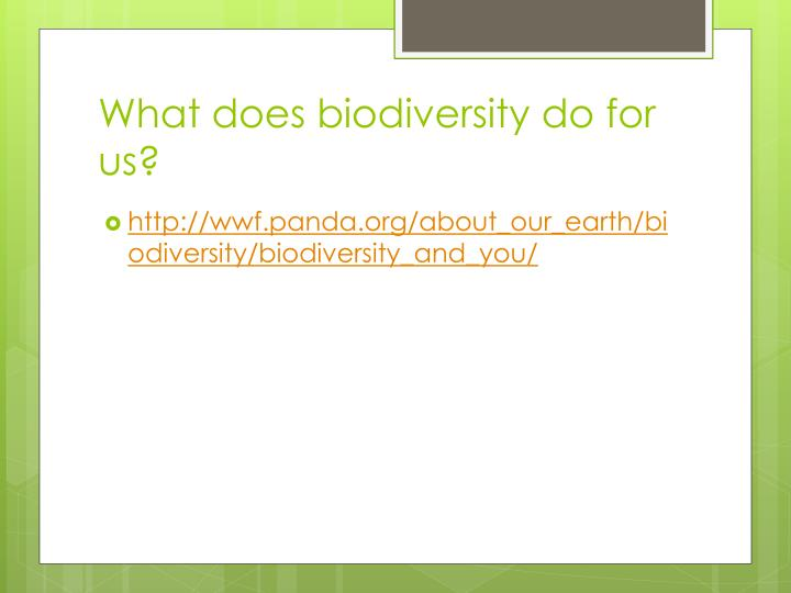 What does biodiversity do for us?