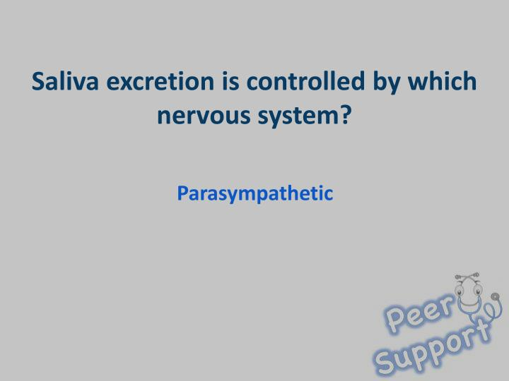 Saliva excretion is controlled by which nervous system?